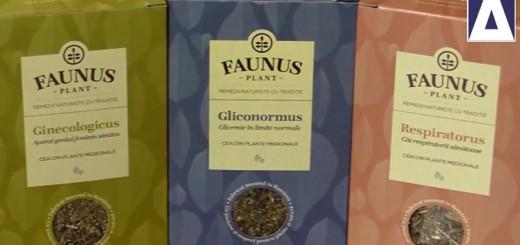 Ceaiuri Faunus Plant