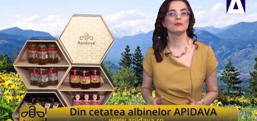 Din cetatea albinelor APIDAVA - Binefacerile mierii de albine