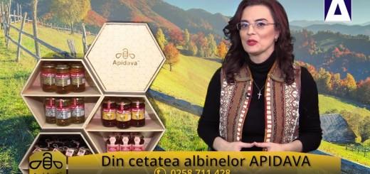 Din cetatea albinelor APIDAVA