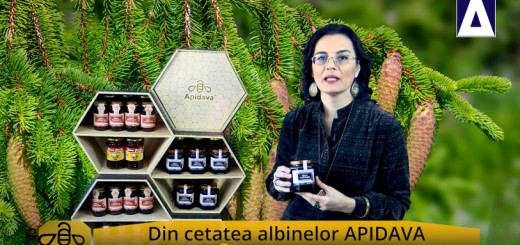 ACC - CA - Mierea de mana Apidava - Realizator Cecilia Caragea