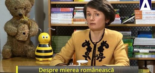 ACC - IA - Despre mierea romaneasca