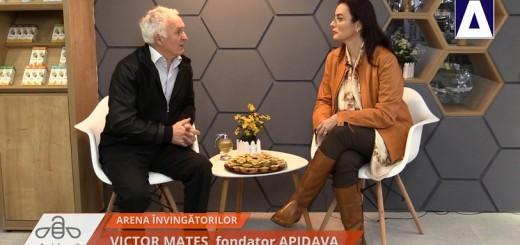 ACC - AI - Victor Mates, Apidava - Reallizator Cecilia Caragea