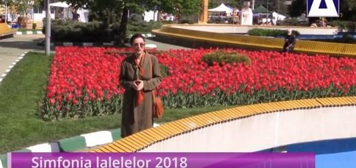 ACC - IA - Simfonia lalelelor - Realizator Cecilia Caragea