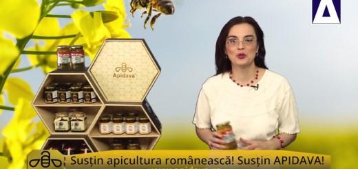 ACC - CA - Ziua Mondiala a Albinelor - Apidava - Realizator Cecilia Caragea