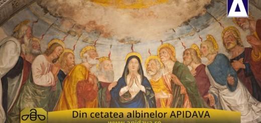 CA - ACC - Traditii de Rusalii - Apidava - Realizator Cecilia Caragea