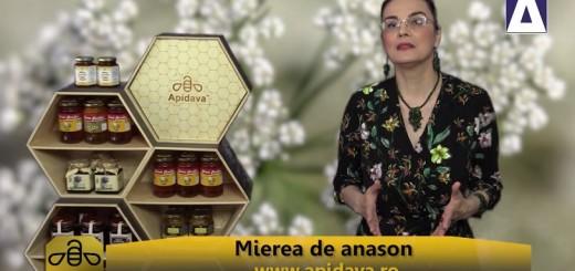 ACC - CA - Mierea de anason - Apidava - Realizator Cecilia Caragea
