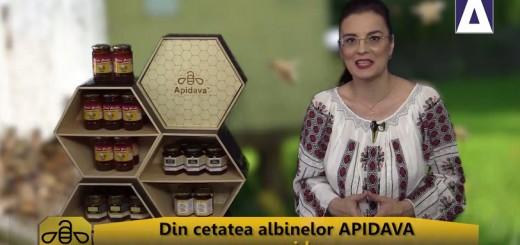 ACC - CA - Traditii de Sanziene - Apidava - Realizator Cecilia Caragea