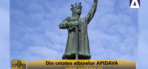 ACC - CA - In amintirea lui Stefan Cel Mare si Sfant - Apidava - Realizator Cecilia Caragea