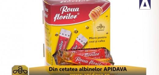 ACC - CA - Vacanta dulce cu Apidava - Realizator Cecilia Caragea