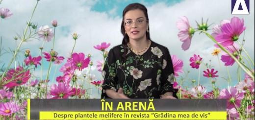 IA - Despre plantele melifere in revista Gradina mea de vis - Apidava - Realizator Cecilia Caragea