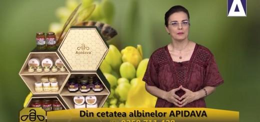 ACC - CA - Despre Sfintii Martiri Brancoveni - Apidava - Realizator Cecilia Caragea