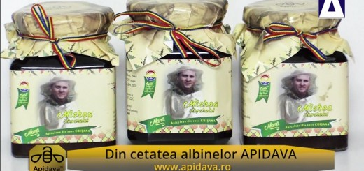 ACC - CA - Mierea Stuparului - Apidava - Realizator Cecilia Caragea