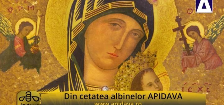 ACC - CA - Traditii de Sarbatoarea Adormirii Maicii Domnului - Apidava - Realizator Cecilia Caragea