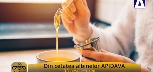 ACC - CA - Mierea, aliment si medicament - Apidava - Realizator Cecilia Caragea