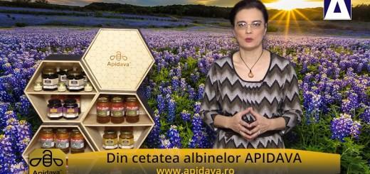 ACC - CA - Traditii de Sfanta Parascheva - Apidava - Realizator Cecilia Caragea