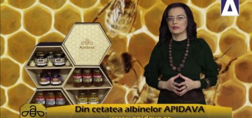 ACC - CA - Traditii de Sfantul Apostol Andrei - Apidava - Realizator Cecilia Caragea