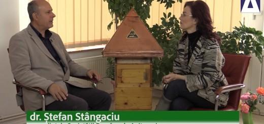 DPS - Despre viata albinelor si beneficiile produselor apicole - Apidava - Realizator Cecilia Caragea