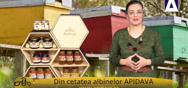 ACC - CA - Sfantul Ambrozie, patronul albinelor si al apicultorilor - Apidava - Realizator Cecilia Caragea