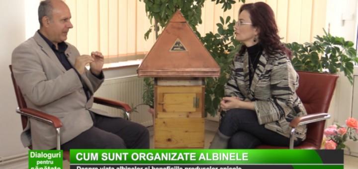 DPS - Despre apifitoterapie II - Medika TV - Realizator Cecilia Caragea
