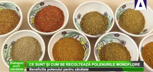 DPS - Beneficiile polenului pentru sanatate - Apidava - Realizator Cecilia Caragea