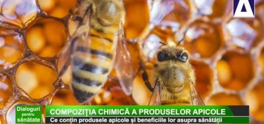 DPS - Compozitia chimica a produselor apicole - Apidava - Realizator Cecilia Caragea