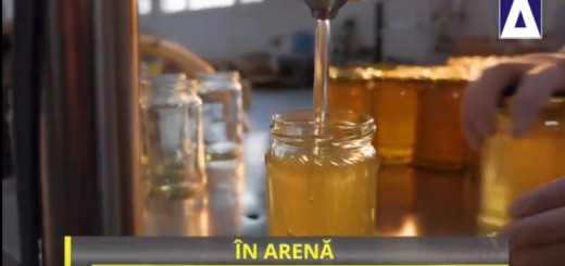 IA - Piata mierii din Romania - Apidava - Realizator Cecilia Caragea