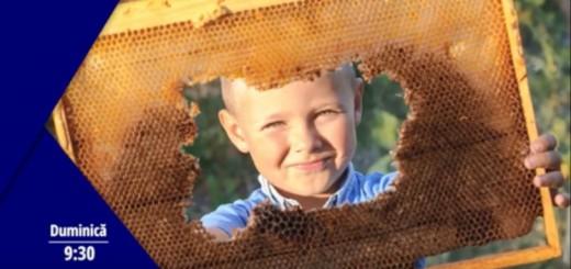 Promo SVI - Apicultura si apicolele romanesti - Apidava - Arena Communications