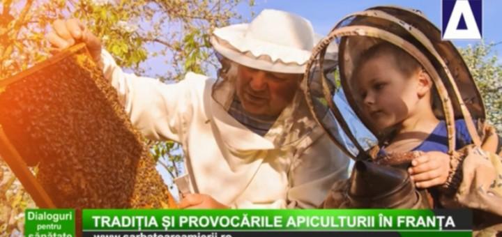 DPS - Traditia si provocarile apiculturii in Franta (FRANCEZA) - Apidava - Realizator Cecilia Caragea