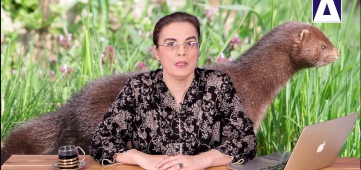 ACC - AS - Transmiterea coronavirusului intre om si animal - Realizator Cecilia Caragea