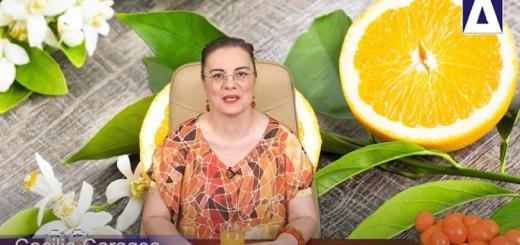 Arena Sanatatii - De ce sa mananci portocale - Istorii si retete cu portocale