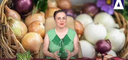 Arena Sanatatii – Retete de ceapa cu miere, remedii naturale pentru afectiuni usoare